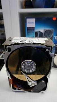 DSC09415 (Large).JPG