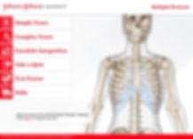 biodigital-mockup1.JPG