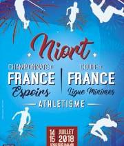 Un Championnat de France chasse l'autre