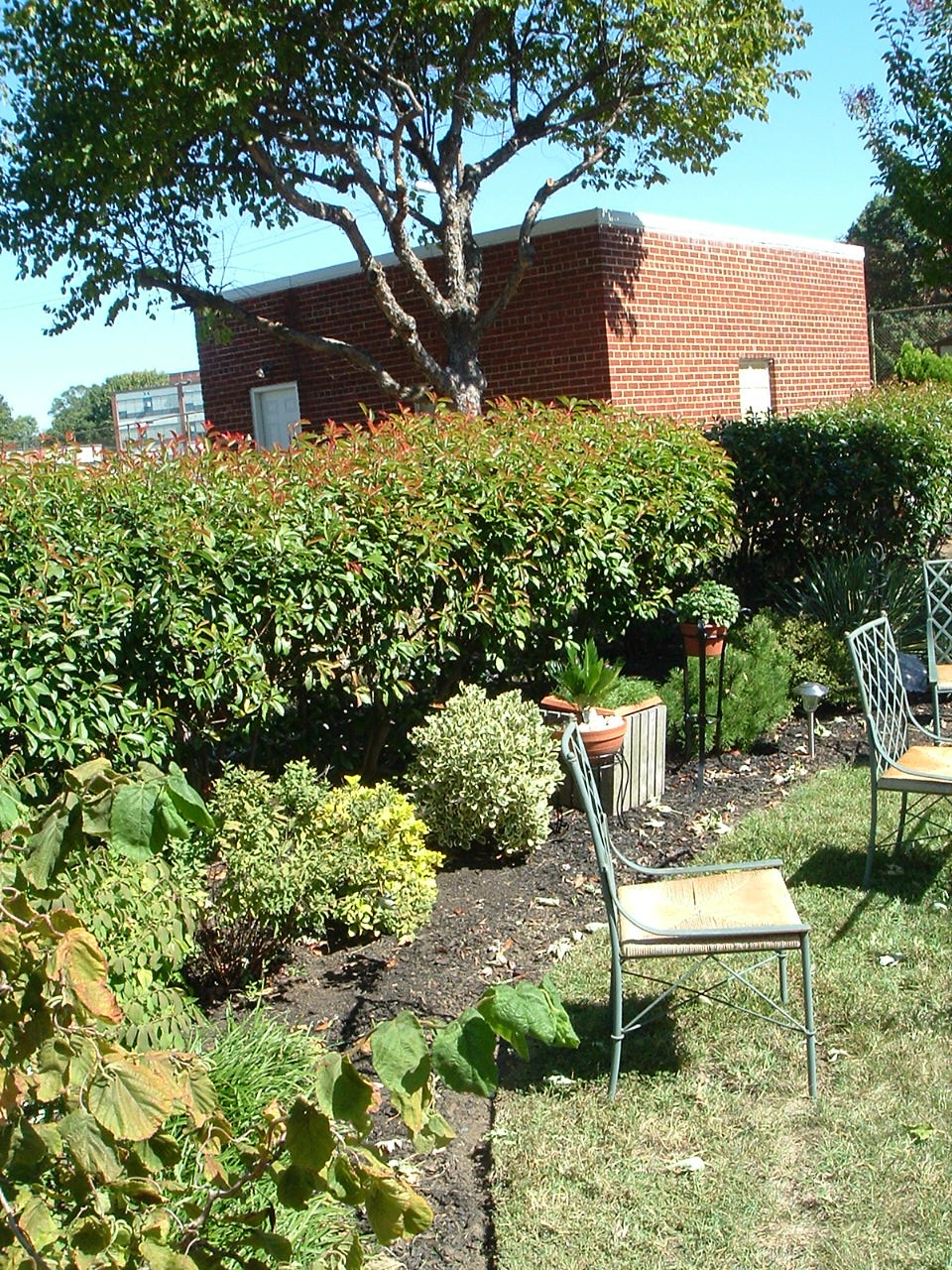 An Eastland Gardens Member's well-maintained gardens with two chairs for company.