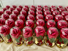 Roses for Mont Blanc. August 2020