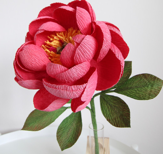 Crepe Paper Coral Charm Peony