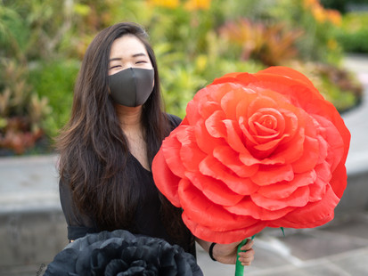 Crepe Paper Flower Artists in Singapore - The Fhing