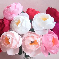 Crepe Paper Flower Workshop