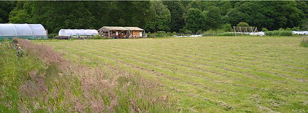 Dunkeld Field June 21