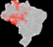 Desmatamento na Amazônia - Jornal Mural