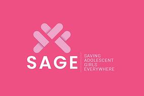 SAGE3.png