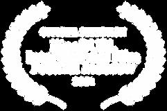 OFFICIAL SELECTION - KinoDUEL Internatio