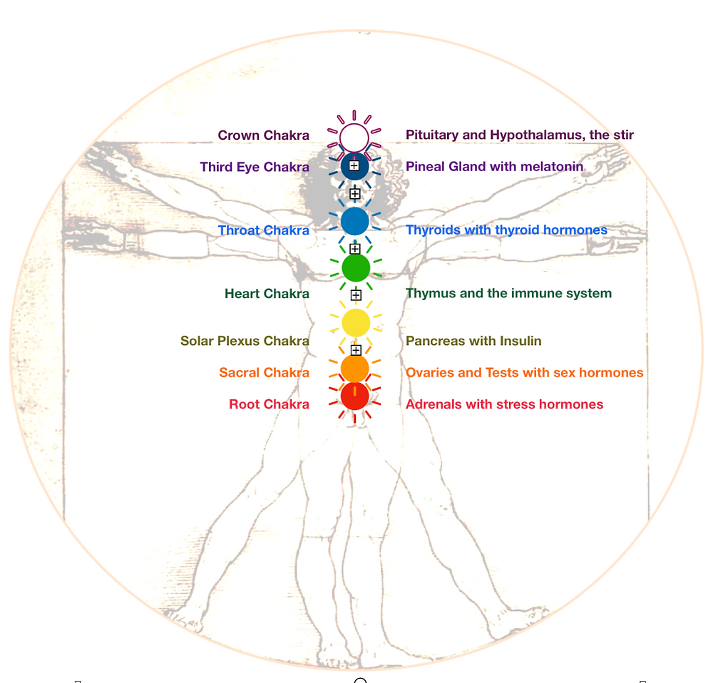 Taste of Chakras Workshop series
