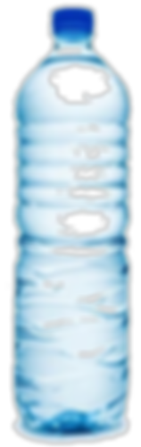 endocrine disruptor, BPA