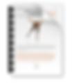 Screen Shot 2020-05-01 at 14.51.28.png
