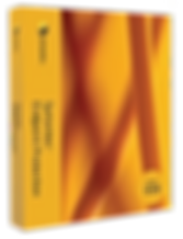 wix_-symantec.png