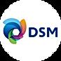 19_DSM.png