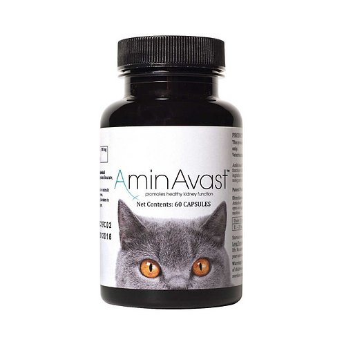 AminAvast 300mg Kidney Support for Dogs & Cats