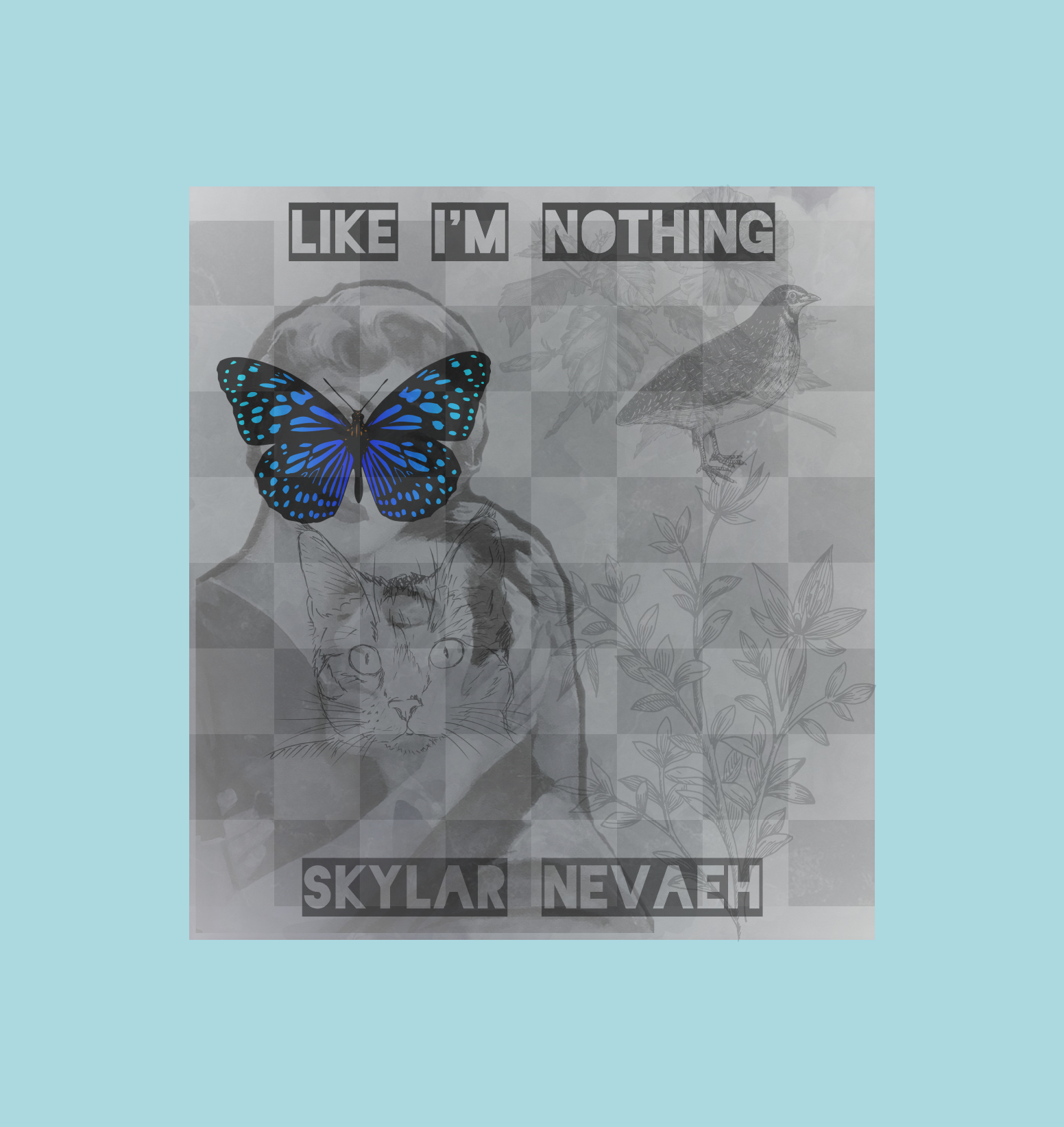 Like I'm Nothing Cover First Version