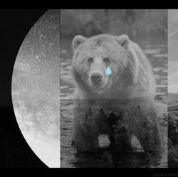 Big Bear Tears Original Cover Art