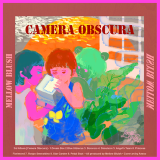 Mellow Blush - Camera Obscura