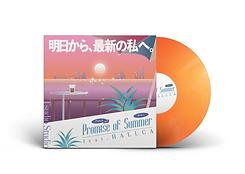 Vinyl Record PSD MockUp.png