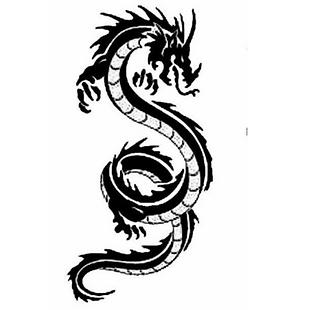 Yamabushi Dragon.png