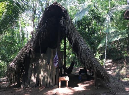 Was ist eine Heilpflanzenkur im peruanischen Amazonas?