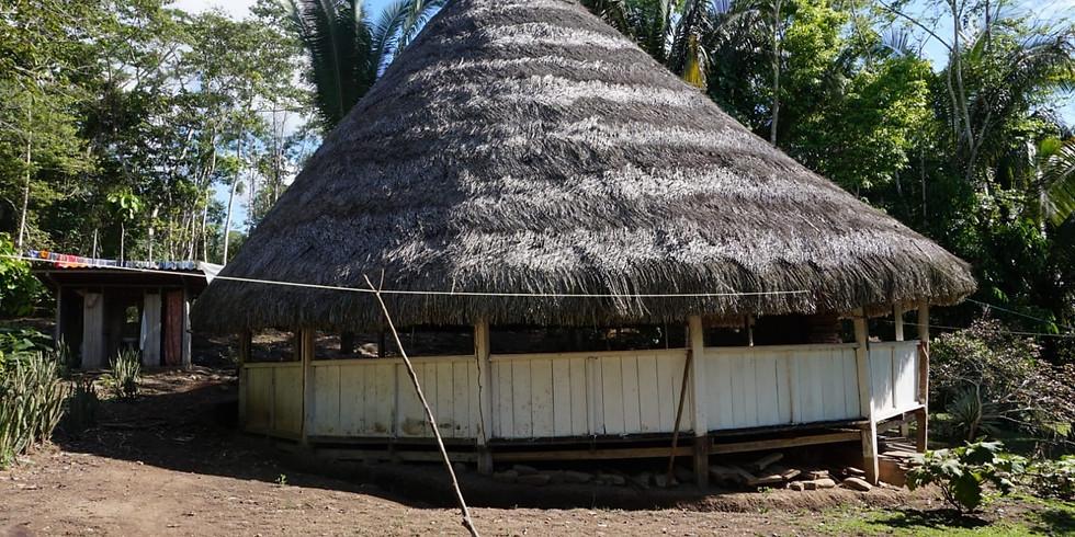 HEILPFLANZENKUR IM PERUANISCHEN AMAZONAS - MAI 2019