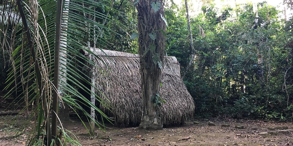 HEILPFLANZENKUR IM PERUANISCHEN AMAZONAS - OKTOBER 2021