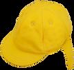cap_yellow_s.png