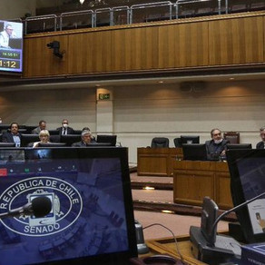 Senado aprueba proyecto de Seguro de Protección de Ingresos para trabajadores a honorarios