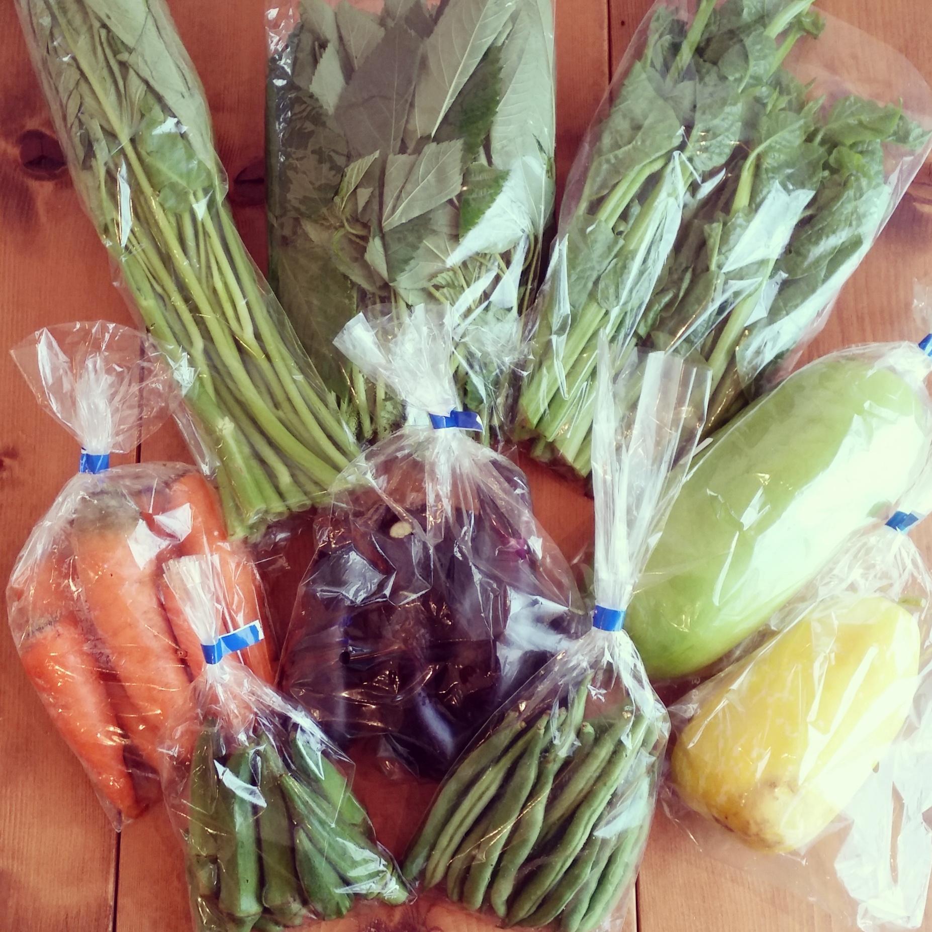 農薬不使用野菜