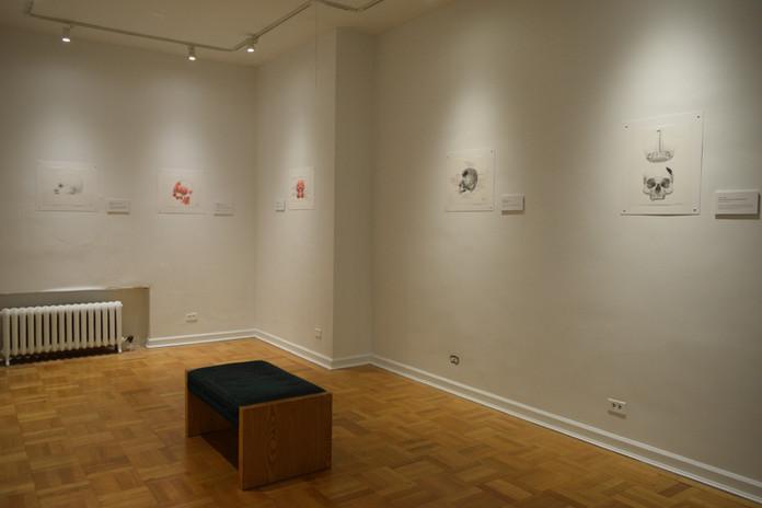 4th Floor Rotating Gallery