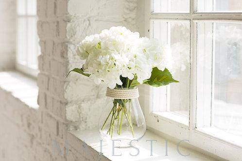 Гортензия в вазе из стекла / Hydrangea in glass vase