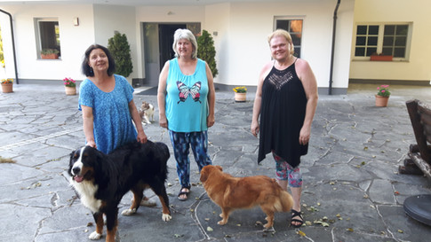 Projektbesprechung mit Humani-Mensch-Tierzentrum