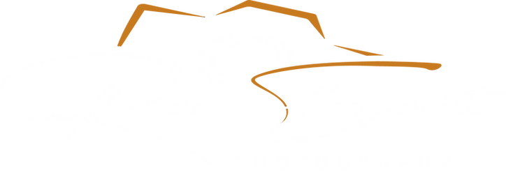 My Logo Whtie  PNG.png
