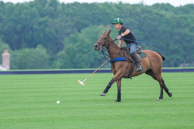 Polo on Deerfield Road