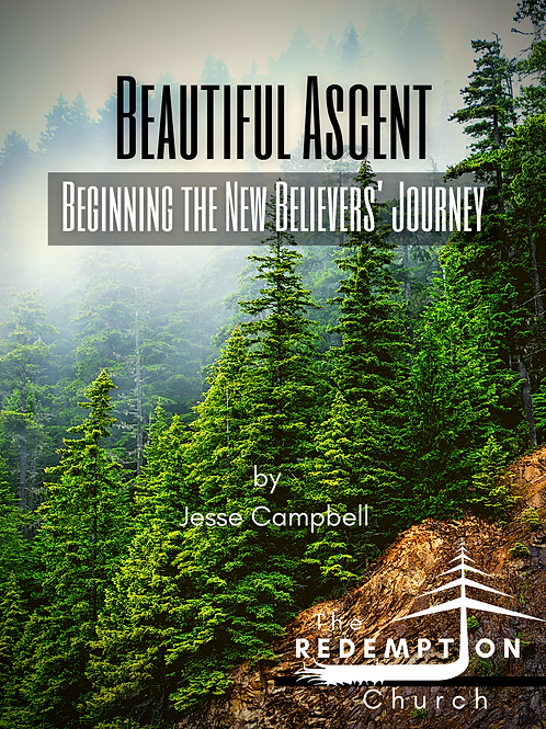 Beautiful Ascent: Beginning the New Believers' Journey