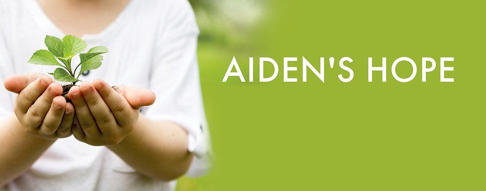 Aidens Hope Background.jpg