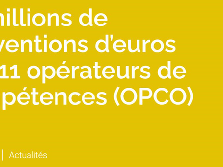 75 millions de subventions aux Opco pour former les personnes les moins qualifiées.