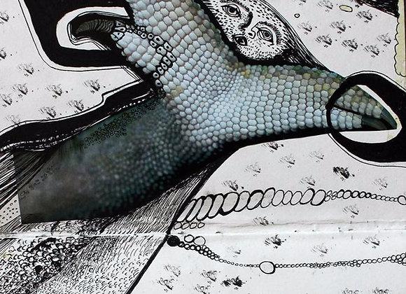 Vise - ilustratie - Smaranda Isar