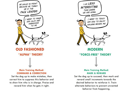Dont fall for the Dominance Theory
