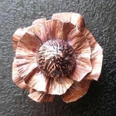 Copper poppy brooch