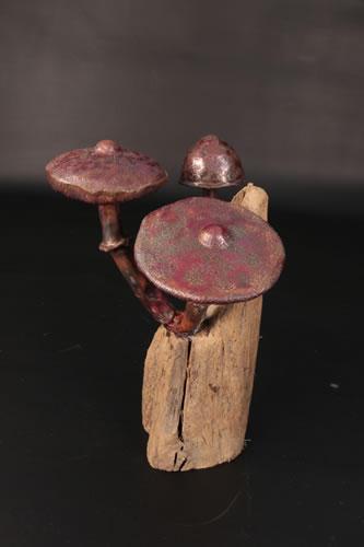 3 copper toadstools