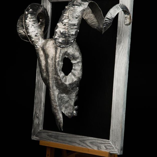 Big Horn Ram skull