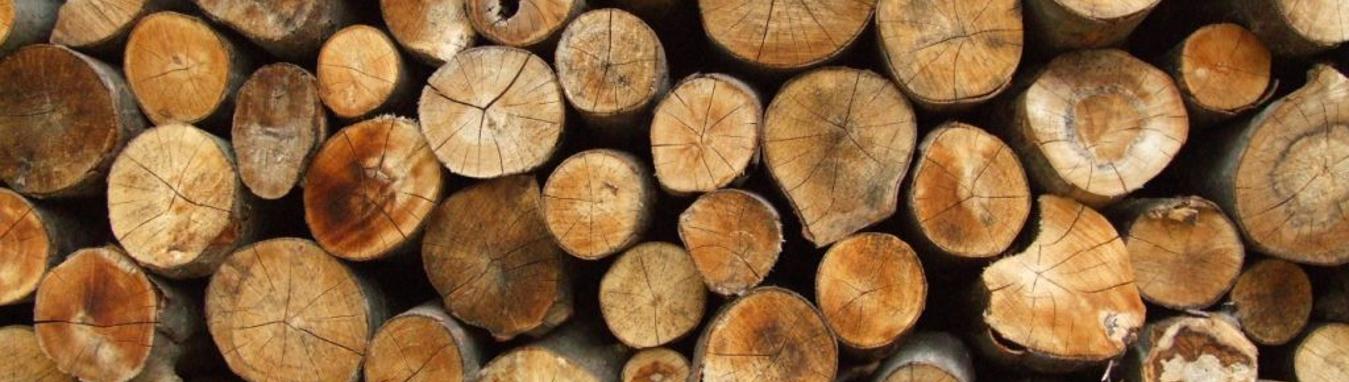 Firewood main