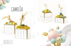 Pavé Chocolats - Catalogue 2022 (6)