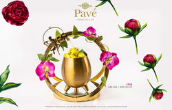 Pavé_Chocolats_-_8_Mars_2020_(23)