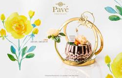 Pavé_Chocolats_-_8_Mars_2020_(28)