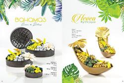 40_Pavé_Chocolats_-_Catalogue_Entreprise