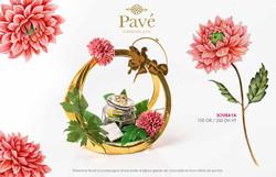 Pavé_Chocolats_-_8_Mars_2020_(21)