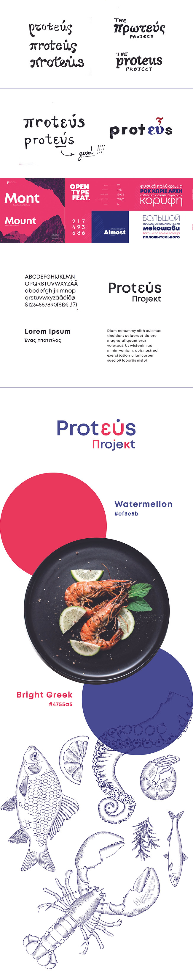 proteus-logo-design-process.jpg