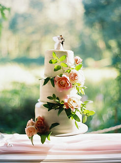 Zoe+Will-Wedding_JakeAnderson-98.jpg